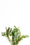 Sage, rosemary, thyme - tufts of herbs white background. Top view royalty free stock image