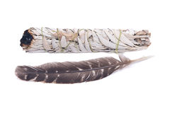 Sage smudge stick with grade A barred turkey smudging feather Stock Image