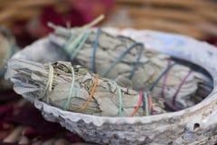 Sage Smudge Sticks branco em uma concha do mar fotos de stock royalty free