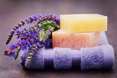 Sage soap. Natural sage soap with fresh sage - beauty treatment Stock Images