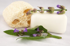 Sage Soap Royalty Free Stock Photography