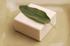 Sage Soap royalty free stock photo