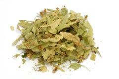 Sage tea Royalty Free Stock Photography