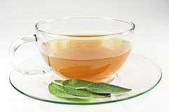 Sage tea Royalty Free Stock Images