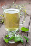 Sage tea Royalty Free Stock Photo