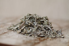 Sage tea. As a herb Royalty Free Stock Photo