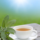 Sage tea for the breakfast Stock Images