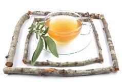 Sage tea Royalty Free Stock Photos
