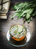Sage tea with fresh leaves on rustic background , health concept, close up Royalty Free Stock Image