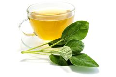 Sage tea in a teacup isolated on white background stock photos