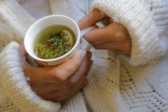 Sage tea with woman hand Royalty Free Stock Images