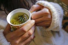 Sage tea with woman hand Royalty Free Stock Photos