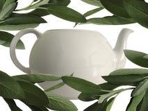 Sage and teapot Stock Photos