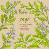 Sage vector frame. Sage leaves vector frame on color background Royalty Free Stock Image