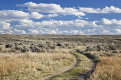 Sagebrush high desert in Wyoming. Dirt road in sagebrush high desert north of Saratoga, Wyoming, early spring Royalty Free Stock Photo