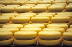 Sagen Sie Käse Stockbild