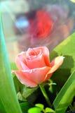 Sagen Sie sie mit Blumen Stockbilder