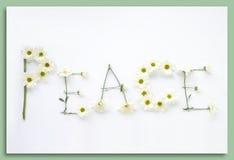 Sagen Sie sie mit Blumen: Frieden Stockfotografie