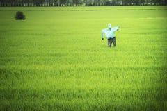 Saggezza dello spaventapasseri e di agricoltura degli agricoltori Fotografia Stock