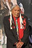 Saginaw Grant Royalty Free Stock Image