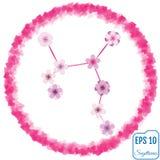 Sagittaire de signe de zodiaque Sakura Concept Fleurit le concept Const illustration libre de droits