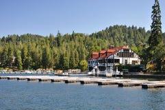 Sagittaria del lago Fotografie Stock