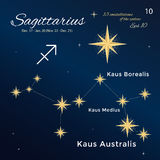 Sagittarius. High detailed vector illustration. 13 constellations of the zodiac with titles and proper names for stars. Brand-new astrological dates and signs Stock Photos