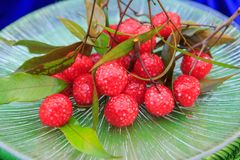 Sago mold to Lychee shape and boil in syrup Royalty Free Stock Photography