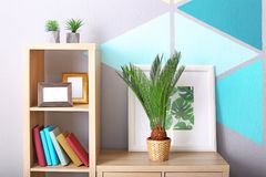 Sago palm and framed picture of tropical leaves. On bookcase in house Stock Image