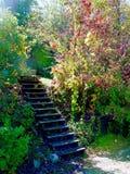Sagolik nedgång i bergen Royaltyfri Fotografi