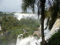 Sagolika Iguazu Falls Arkivfoto