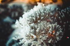 Sagolikt träd som täckas med frost Arkivbild