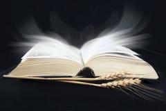 Sagrada Biblia en el negro imagenes de archivo