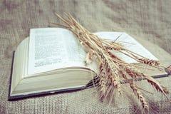Sagrada Biblia en la tela imagenes de archivo