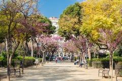 Sagrada Família Square. Stock Image
