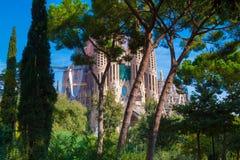 Sagrada Familia在巴塞罗那 库存照片