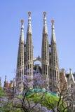 Sagrada Familia (Barcellona) Fotografia Stock Libera da Diritti