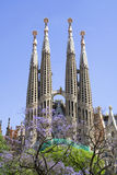 Sagrada Familia (Barcelona) Royalty-vrije Stock Foto
