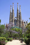 Sagrada Familia (Barcelone) images stock