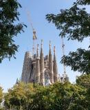 Sagrada Familia behind trees. Sagrada Familia in Barcelona, western facade behind the trees royalty free stock images