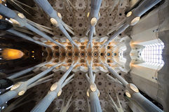 Sagrada Familia cathedral ceiling architecture Stock Images