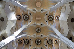 Sagrada Familia Ceiling Stock Photography