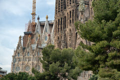 Sagrada Familia Church and Green Tree Tops Stock Image