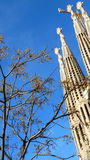Sagrada familia i Barcelona (Spanien) fragment Arkivbilder