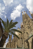 Sagrada Familia with palm tree in Barcelona. Spain stock photos