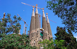 Sagrada Familia from park. Royalty Free Stock Photo