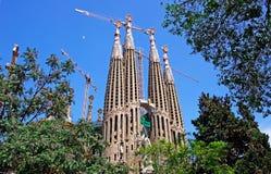 Sagrada Familia from park. Royalty Free Stock Photo