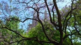 The Sagrada Familia. The towers of the Sagrada Familia ,through the flowering shrubs in the Catalan capital, Barcelona Stock Photo