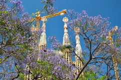 Sagrada Familia towers in the spring Barcelona Stock Photography