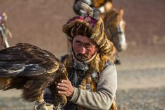 Berkutchi Eagle Hunter while hunting to the hare with a golden eagles on his arms in the mountains of Bayan-Olgii aimag. SAGSAY, MONGOLIA - SEP 28, 2017 Royalty Free Stock Images